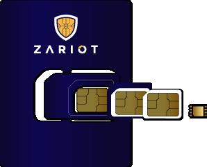 ZARIOT SIM formats